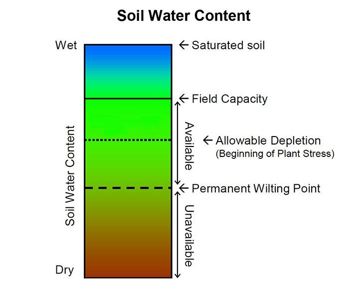 Bank balance soil water content usu for Soil and water facts